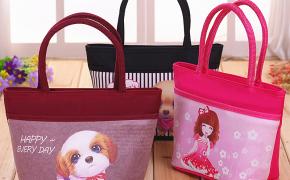 淘宝集运转运到韩国新款女士手提包小布包迷你拎包2020上班小包中年妈妈手拎买菜包包