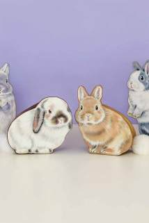 邮多多淘宝集运转运日本芬理希梦felissimo站立的兔子包包收纳化妆包